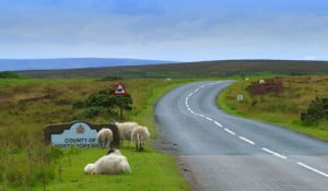 north_york_moors_pic_01_small